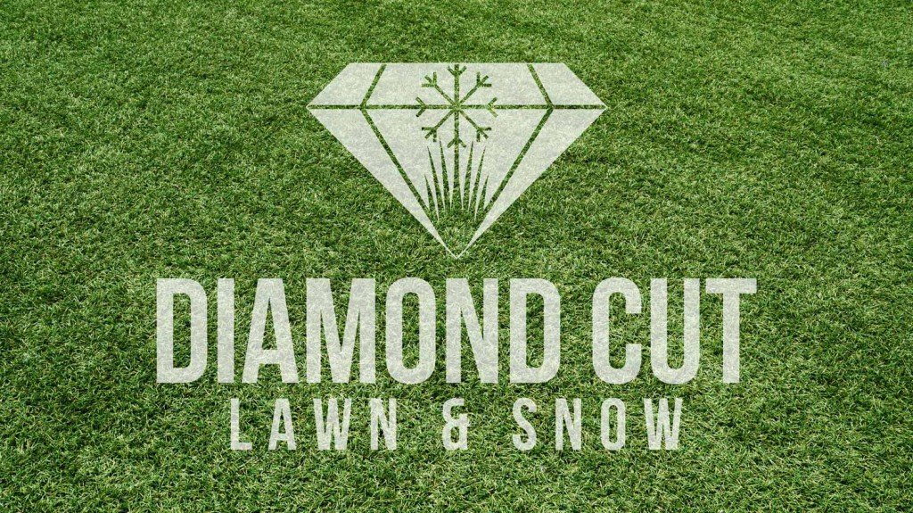 Diamond Cut Lawn and Snow