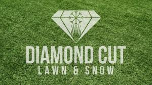 Diamond Cut Lawn and Snow